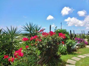 St. Croix yoga retreat gardens